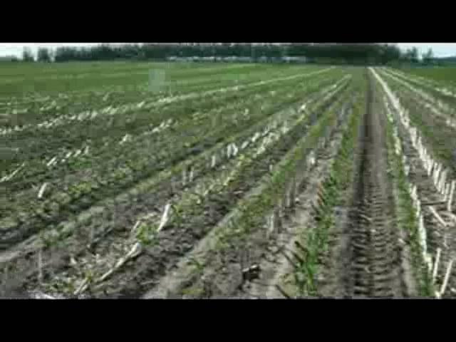 长春市农机推广总站在农安检查保护性工作